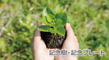 garden-contents-04