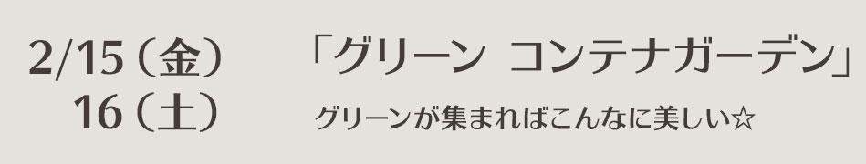 lesson-0215