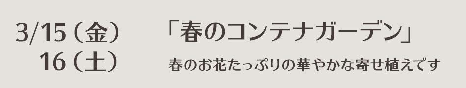 lesson-0315