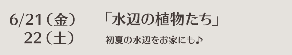 lesson-0621