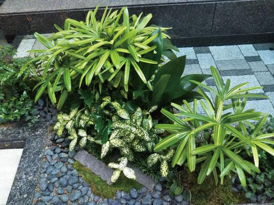 京都ブライトンホテル様 事例3