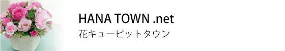 top-subtitle-04