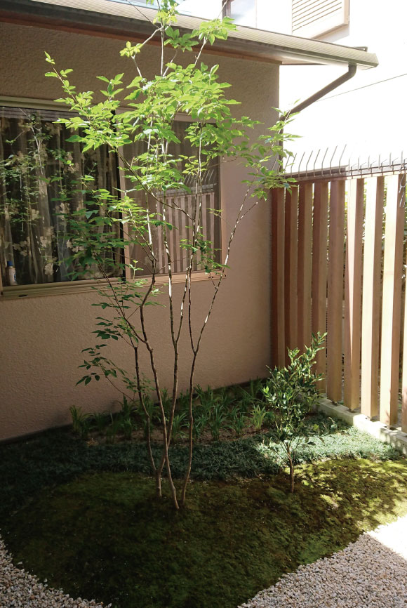 garden-price_14