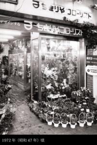 生花園芸実例写真11