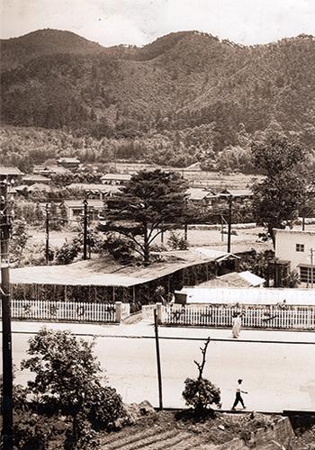 1955頃山科御陵_re