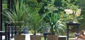 ARTIFICIAL GREEN 造花